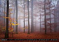 Zauberhafter Sachsenwald (Wandkalender 2019 DIN A2 quer) - Produktdetailbild 2