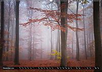 Zauberhafter Sachsenwald (Wandkalender 2019 DIN A2 quer) - Produktdetailbild 12