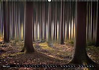 Zauberhafter Sachsenwald (Wandkalender 2019 DIN A2 quer) - Produktdetailbild 3