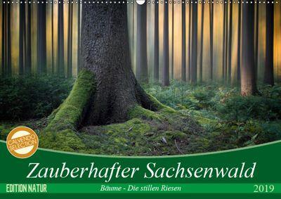 Zauberhafter Sachsenwald (Wandkalender 2019 DIN A2 quer), Carsten Meyerdierks