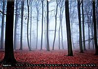 Zauberhafter Sachsenwald (Wandkalender 2019 DIN A2 quer) - Produktdetailbild 8