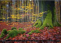 Zauberhafter Sachsenwald (Wandkalender 2019 DIN A2 quer) - Produktdetailbild 4