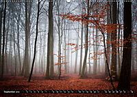 Zauberhafter Sachsenwald (Wandkalender 2019 DIN A2 quer) - Produktdetailbild 9