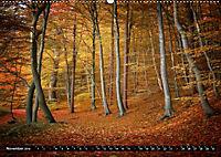 Zauberhafter Sachsenwald (Wandkalender 2019 DIN A2 quer) - Produktdetailbild 11