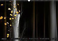 Zauberhafter Sachsenwald (Wandkalender 2019 DIN A3 quer) - Produktdetailbild 1