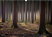Zauberhafter Sachsenwald (Wandkalender 2019 DIN A3 quer) - Produktdetailbild 3