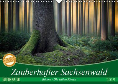Zauberhafter Sachsenwald (Wandkalender 2019 DIN A3 quer), Carsten Meyerdierks