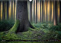 Zauberhafter Sachsenwald (Wandkalender 2019 DIN A3 quer) - Produktdetailbild 6