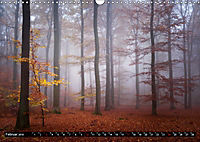 Zauberhafter Sachsenwald (Wandkalender 2019 DIN A3 quer) - Produktdetailbild 2