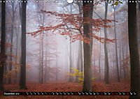 Zauberhafter Sachsenwald (Wandkalender 2019 DIN A3 quer) - Produktdetailbild 12