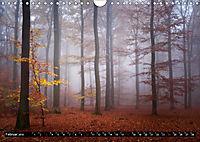 Zauberhafter Sachsenwald (Wandkalender 2019 DIN A4 quer) - Produktdetailbild 2