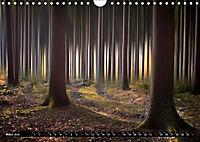 Zauberhafter Sachsenwald (Wandkalender 2019 DIN A4 quer) - Produktdetailbild 3