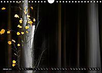 Zauberhafter Sachsenwald (Wandkalender 2019 DIN A4 quer) - Produktdetailbild 1