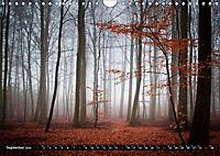 Zauberhafter Sachsenwald (Wandkalender 2019 DIN A4 quer) - Produktdetailbild 9