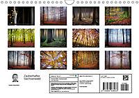 Zauberhafter Sachsenwald (Wandkalender 2019 DIN A4 quer) - Produktdetailbild 13
