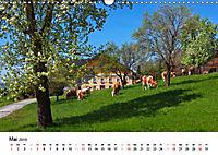 Zauberhaftes Mondseeland (Wandkalender 2019 DIN A3 quer) - Produktdetailbild 5