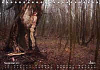 ZAUBERWALD Mystik der Natur (Tischkalender 2019 DIN A5 quer) - Produktdetailbild 11