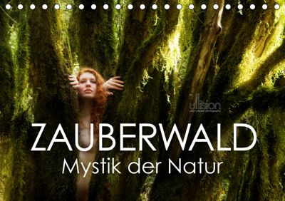 ZAUBERWALD Mystik der Natur (Tischkalender 2019 DIN A5 quer), Ulrich Allgaier