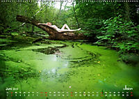 ZAUBERWALD Mystik der Natur (Wandkalender 2019 DIN A2 quer) - Produktdetailbild 6