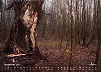 ZAUBERWALD Mystik der Natur (Wandkalender 2019 DIN A2 quer) - Produktdetailbild 11