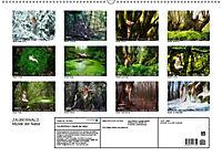 ZAUBERWALD Mystik der Natur (Wandkalender 2019 DIN A2 quer) - Produktdetailbild 13