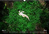ZAUBERWALD Mystik der Natur (Wandkalender 2019 DIN A3 quer) - Produktdetailbild 5