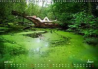 ZAUBERWALD Mystik der Natur (Wandkalender 2019 DIN A3 quer) - Produktdetailbild 6