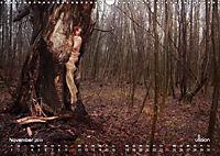 ZAUBERWALD Mystik der Natur (Wandkalender 2019 DIN A3 quer) - Produktdetailbild 11