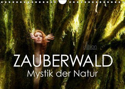 ZAUBERWALD Mystik der Natur (Wandkalender 2019 DIN A4 quer), Ulrich Allgaier