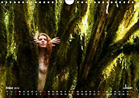 ZAUBERWALD Mystik der Natur (Wandkalender 2019 DIN A4 quer) - Produktdetailbild 3