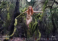ZAUBERWALD Mystik der Natur (Wandkalender 2019 DIN A4 quer) - Produktdetailbild 10