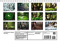 ZAUBERWALD Mystik der Natur (Wandkalender 2019 DIN A4 quer) - Produktdetailbild 13