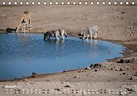 Zebras - Afrikas Wildpferde (Tischkalender 2019 DIN A5 quer) - Produktdetailbild 8