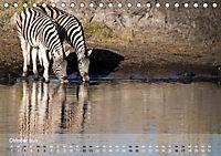 Zebras - Afrikas Wildpferde (Tischkalender 2019 DIN A5 quer) - Produktdetailbild 10