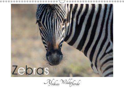 Zebras - Afrikas Wildpferde (Wandkalender 2019 DIN A3 quer), Irma van der Wiel