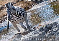 Zebras - Afrikas Wildpferde (Wandkalender 2019 DIN A3 quer) - Produktdetailbild 2