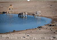 Zebras - Afrikas Wildpferde (Wandkalender 2019 DIN A3 quer) - Produktdetailbild 8