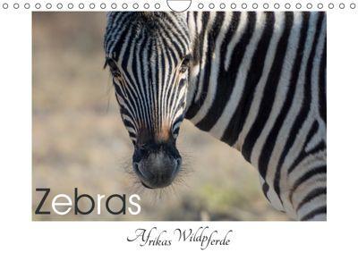 Zebras - Afrikas Wildpferde (Wandkalender 2019 DIN A4 quer), Irma van der Wiel
