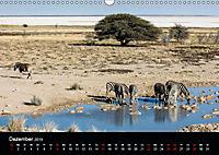 Zebras - Faszination der Streifen (Wandkalender 2019 DIN A3 quer) - Produktdetailbild 12