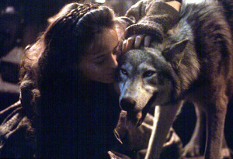 bergdoktor zeit der wölfe