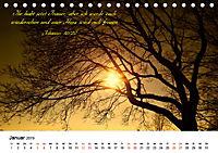 Zeit für Trauer - begleitet mit Zitaten (Tischkalender 2019 DIN A5 quer) - Produktdetailbild 1