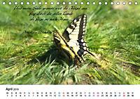 Zeit für Trauer - begleitet mit Zitaten (Tischkalender 2019 DIN A5 quer) - Produktdetailbild 4