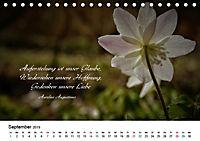 Zeit für Trauer - begleitet mit Zitaten (Tischkalender 2019 DIN A5 quer) - Produktdetailbild 9