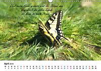 Zeit für Trauer - begleitet mit Zitaten (Wandkalender 2019 DIN A3 quer) - Produktdetailbild 4