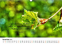 Zeit für Trauer - begleitet mit Zitaten (Wandkalender 2019 DIN A3 quer) - Produktdetailbild 11