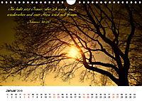 Zeit für Trauer - begleitet mit Zitaten (Wandkalender 2019 DIN A4 quer) - Produktdetailbild 1