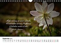 Zeit für Trauer - begleitet mit Zitaten (Wandkalender 2019 DIN A4 quer) - Produktdetailbild 9