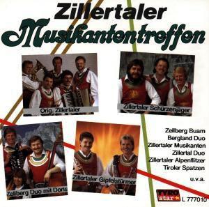 Zillertaler Musikantentreffen, Diverse Interpreten