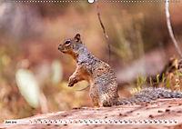 Zion Nationalpark (Wandkalender 2019 DIN A2 quer) - Produktdetailbild 11