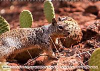 Zion Nationalpark (Wandkalender 2019 DIN A2 quer) - Produktdetailbild 3